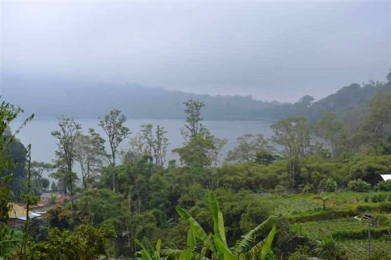 Jual tanah di Bedugul Bali