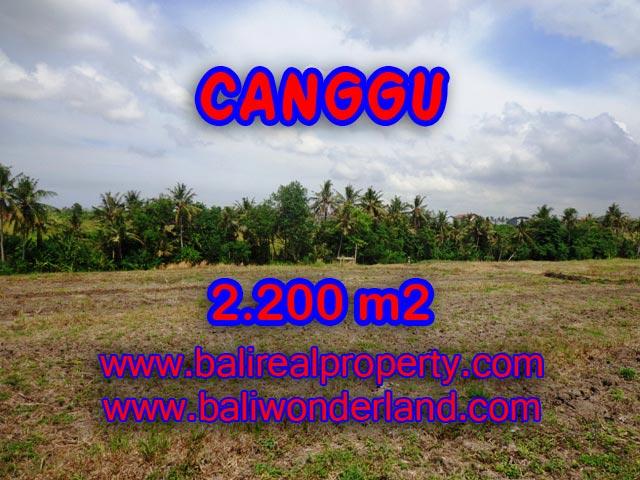 JUAL TANAH DI CANGGU Bali 2,200 m2 di Tumbak Bayuh