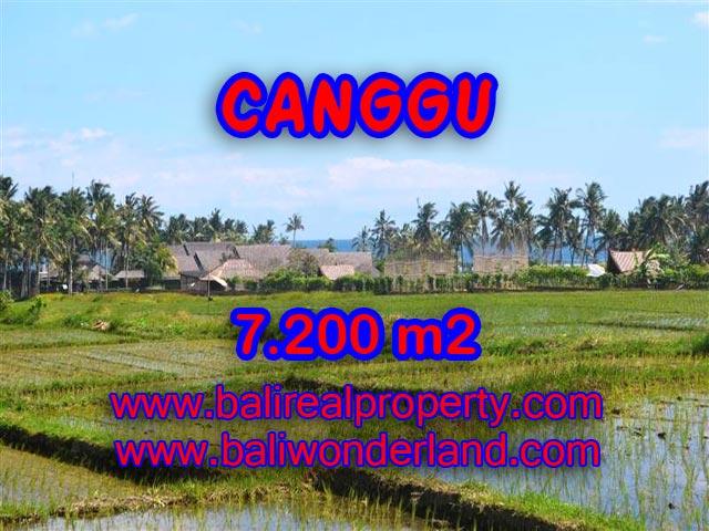 Tanah di Canggu Bali dijual 72 Are di Canggu pererenan
