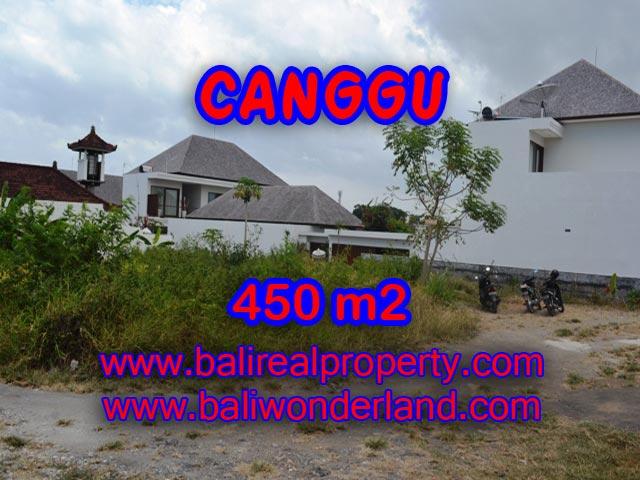Tanah di Bali dijual 4,5 are di Batu Bolong