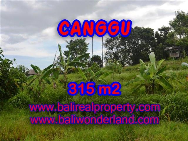 Tanah di Bali dijual 315 m2 di canggu brawa