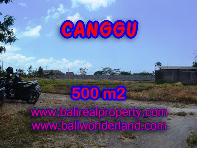 Jual tanah di Canggu 5 Are View sawah di Batu Bolong