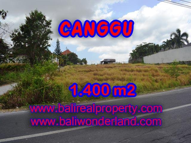 Tanah dijual di Canggu 14 Are View sawah di Batu Bolong Bali