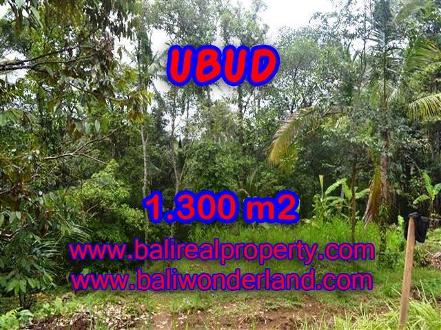MURAH ! TANAH DIJUAL DI UBUD BALI TJUB362 - INVESTASI PROPERTY DI BALI