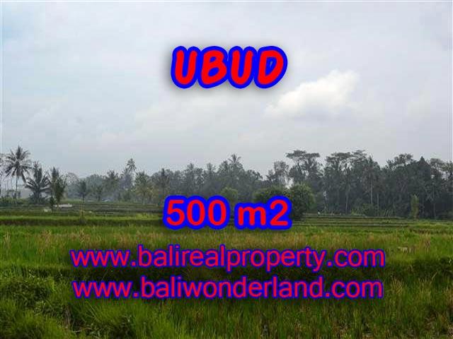 DIJUAL TANAH DI UBUD BALI MURAH TJUB363