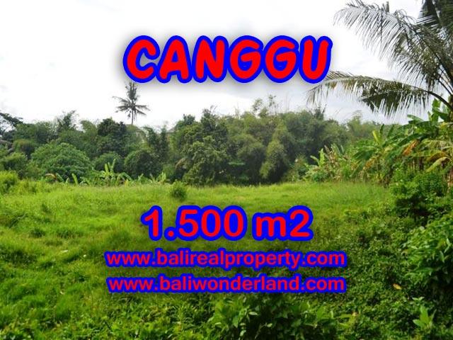 Tanah di Bali dijual 1,500 m2 di Canggu pererenan