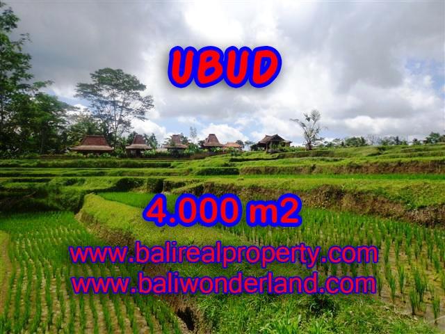 Tanah dijual di Ubud Bali 4.000 m2 view sawah dan sungai di Dekat sentral Ubud
