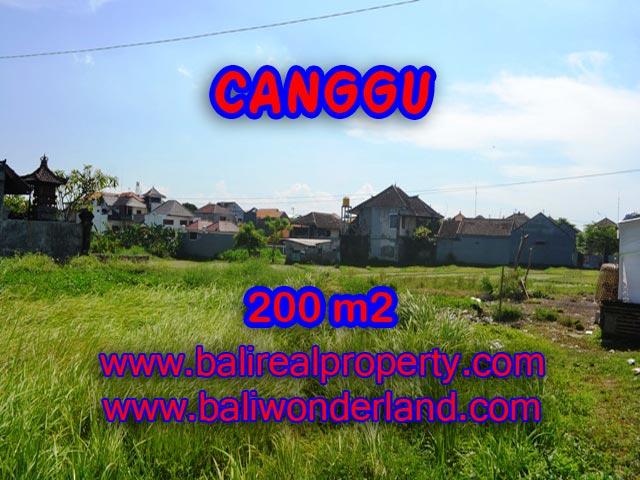 Tanah di Canggu Bali dijual 200 m2 view sawah di Canggu Brawa