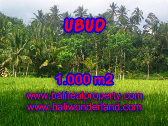 Jual tanah di Bali 1.000 m2 view sawah di Ubud Payangan