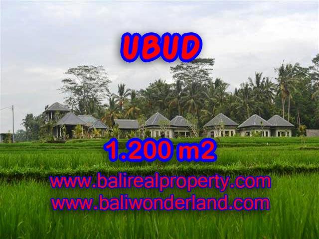 TANAH DIJUAL DI BALI, MURAH DI UBUD HANYA RP 3.850.000 / M2