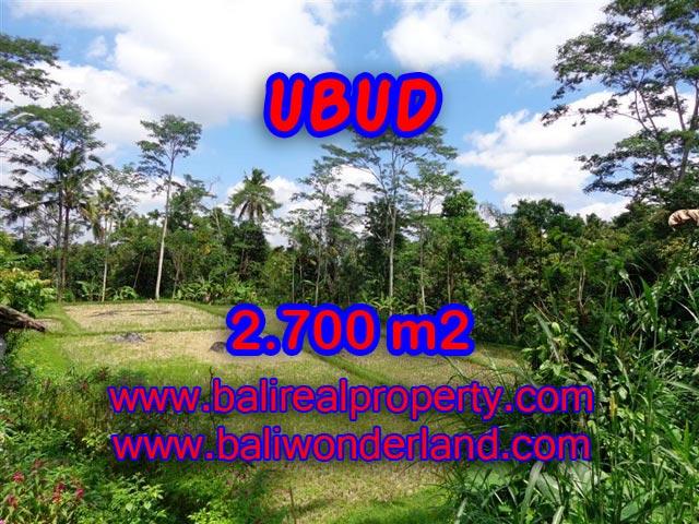 Tanah dijual di Ubud 2.700 m2 view sawah dan hutan di Ubud Tampak Siring