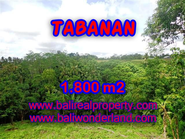 TANAH DI TABANAN BALI DIJUAL CUMA RP 280.000 / M2
