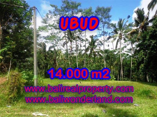 Jual tanah di Ubud Bali 14.000 m2 view alami dekat sungai di Ubud Payangan
