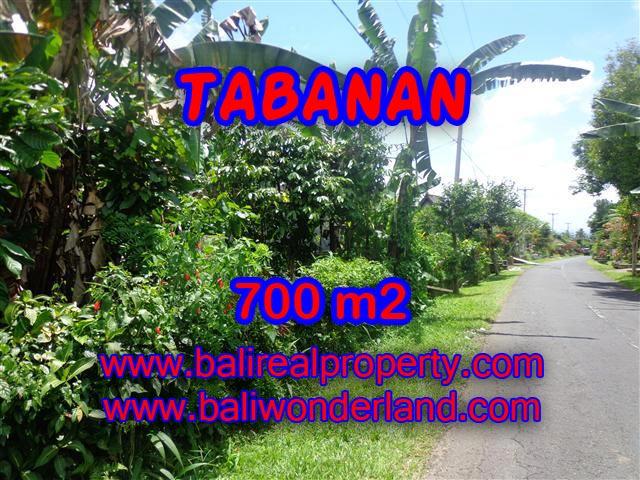 DIJUAL TANAH DI TABANAN BALI TJTB090 - INVESTASI PROPERTY DI BALI