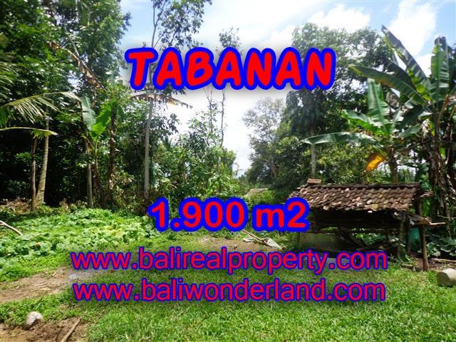 TANAH DIJUAL DI BALI, MURAH DI TABANAN HANYA RP 350.000 / M2