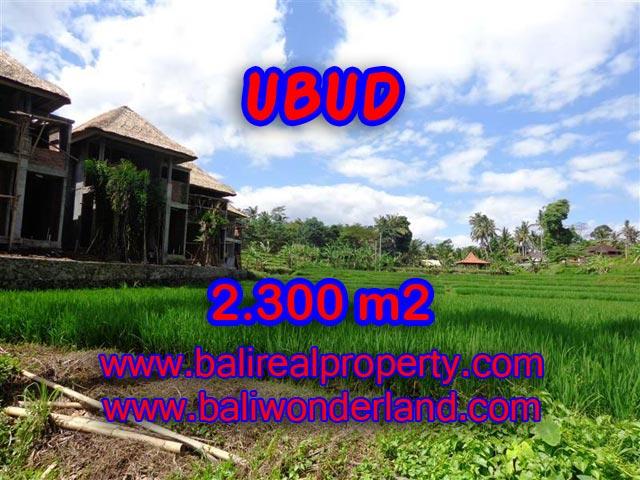 Tanah di Ubud Bali dijual 2.300 m2 view sawah dan sungai