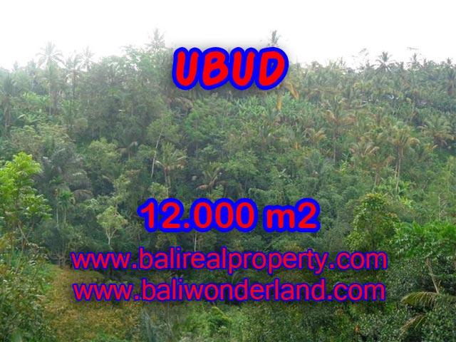 Jual tanah di Ubud view tebing dan sungai di Ubud Payangan Bali