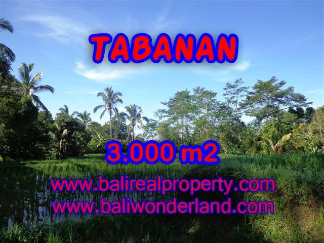 DIJUAL TANAH MURAH DI TABANAN TJTB110 - KESEMPATAN INVESTASI PROPERTY DI BALI