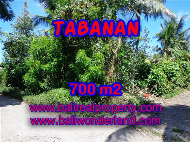 TANAH DIJUAL DI TABANAN CUMA RP 3.800.000 / M2