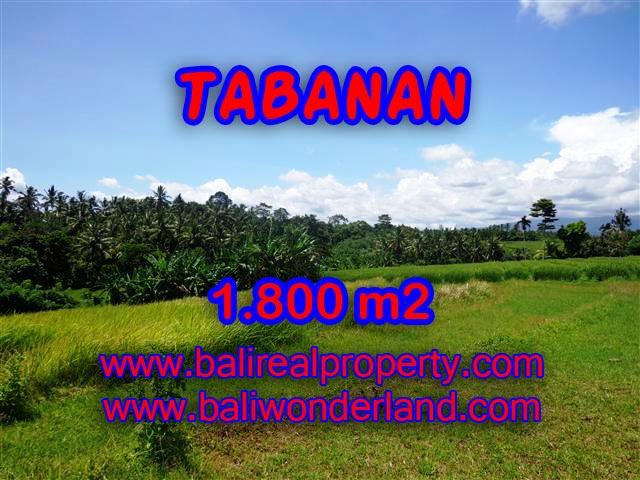 JUAL TANAH DI TABANAN CUMA RP 750.000 / M2