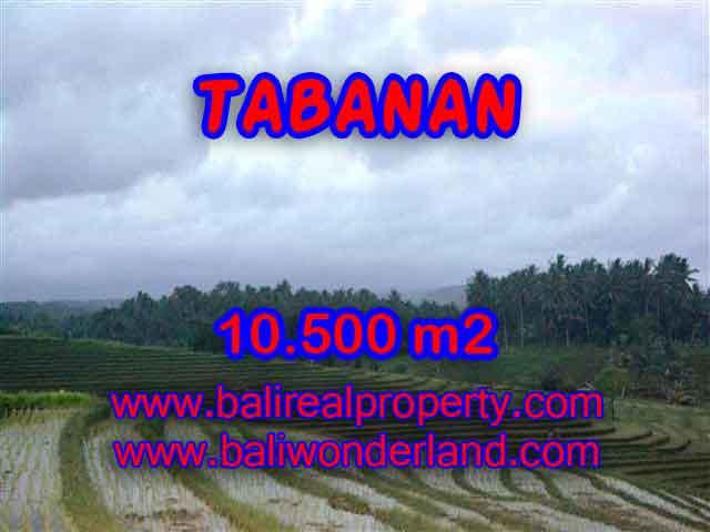 Jual Tanah murah di TABANAN TJTB095 - investasi property di Bali