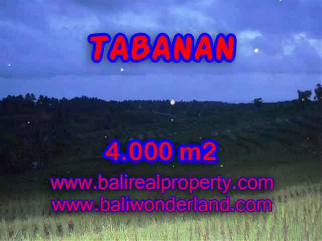 JUAL MURAH TANAH DI TABANAN BALI TJTB096 - PELUANG INVESTASI PROPERTY DI BALI