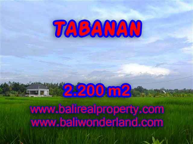 TANAH MURAH DIJUAL DI TABANAN BALI TJTB097 - PELUANG INVESTASI PROPERTY DI BALI