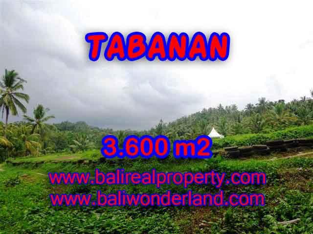 INVESTASI PROPERTI DI BALI - TANAH DIJUAL DI TABANAN CUMA RP 350.000 / M2