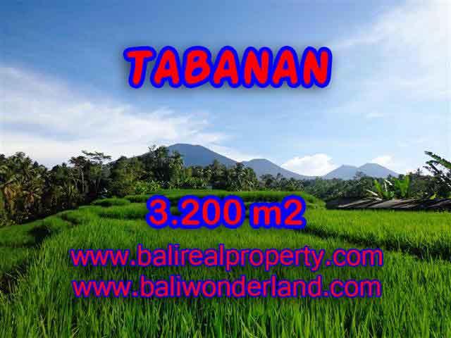 INVESTASI PROPERTI DI BALI - TANAH MURAH DI TABANAN DIJUAL CUMA RP 350.000 / M2