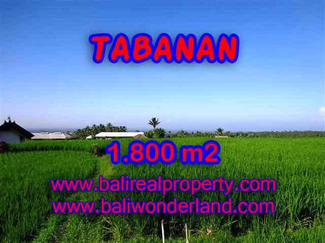 DIJUAL MURAH TANAH DI TABANAN BALI TJTB119 - PELUANG INVESTASI PROPERTY DI BALI