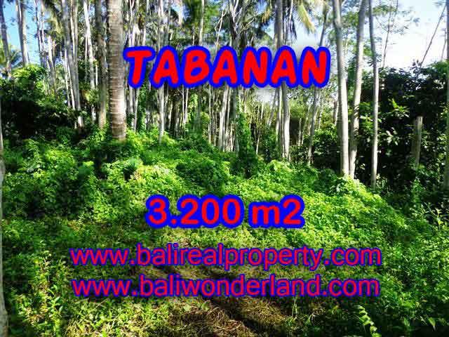 DIJUAL TANAH MURAH DI TABANAN BALI TJTB120 - INVESTASI PROPERTY DI BALI