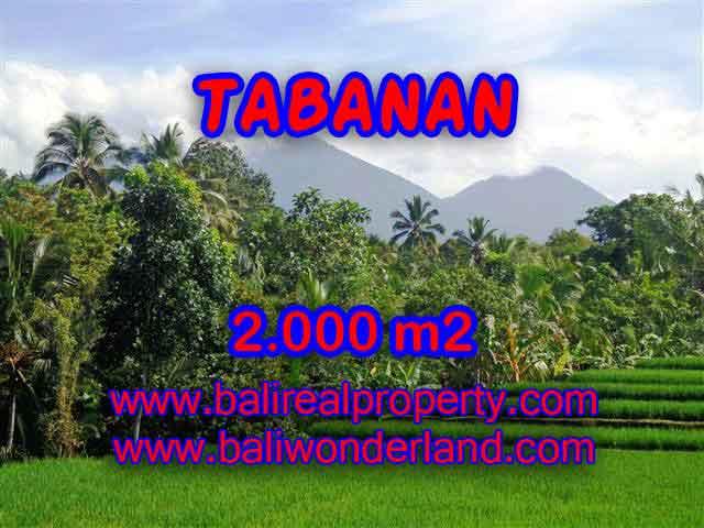 JUAL TANAH DI TABANAN BALI MURAH TJTB121