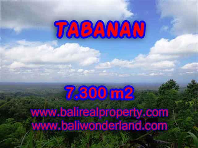 TANAH MURAH DI TABANAN BALI DIJUAL TJTB123 - INVESTASI PROPERTY DI BALI