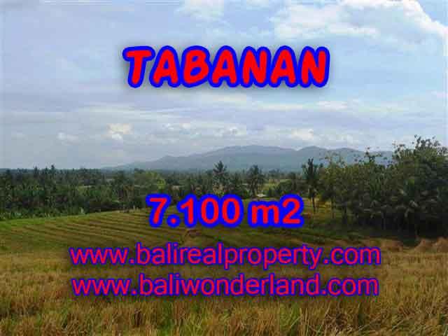 Murah ! Tanah di TABANAN Bali Dijual Rp 850.000 / m2 - TJTB125