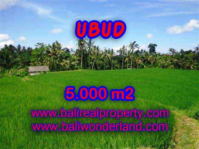 Investasi Properti di Bali - Murah ! Tanah di UBUD Bali Dijual TJUB389