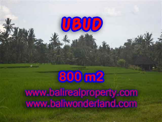 TANAH DIJUAL DI UBUD BALI MURAH TJUB396 - PELUANG INVESTASI PROPERTY DI BALI