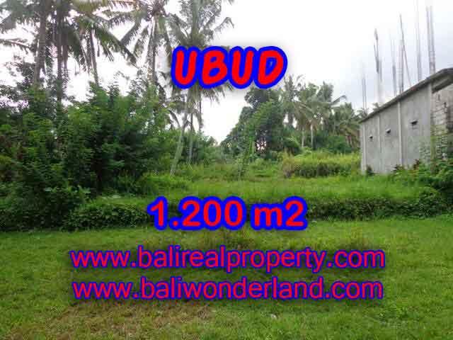 Murah ! Tanah di UBUD Bali Dijual Rp 3.850.000 / m2 - TJUB399