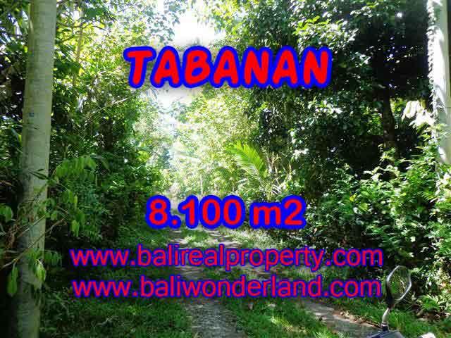 MURAH ! TANAH DIJUAL DI TABANAN BALI TJTB113 - INVESTASI PROPERTY DI BALI