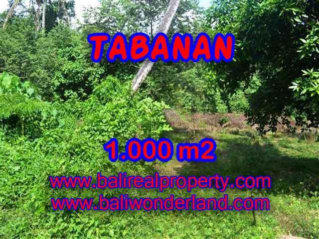 DIJUAL TANAH DI TABANAN BALI MURAH TJTB114