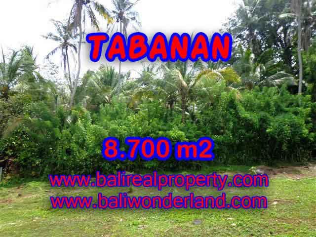 Investasi Properti di Bali - Murah ! Tanah di TABANAN Bali Dijual TJTB115