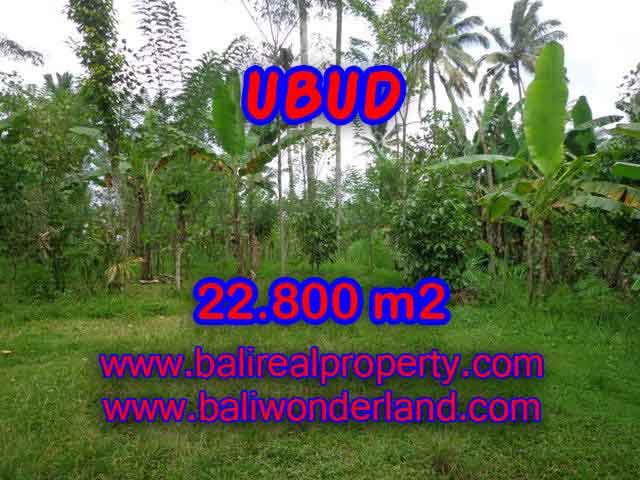 Peluang Investasi Properti di Bali - Jual Tanah murah di UBUD TJUB409