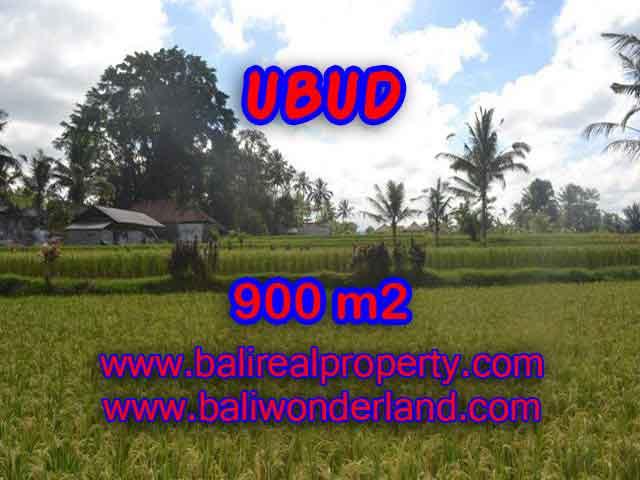 TANAH DI UBUD BALI DIJUAL TJUB412 - PELUANG INVESTASI PROPERTY DI BALI