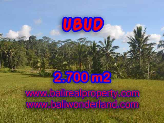 DIJUAL TANAH DI UBUD RP 1.750.000 / M2 - TJUB414 - INVESTASI PROPERTY DI BALI