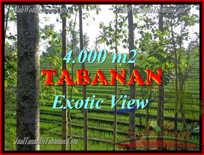 DIJUAL TANAH DI TABANAN BALI TJTB150 - INVESTASI PROPERTY DI BALI