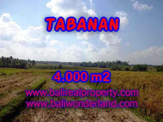 TANAH DIJUAL DI TABANAN MURAH TJTB132 - PELUANG INVESTASI PROPERTY DI BALI