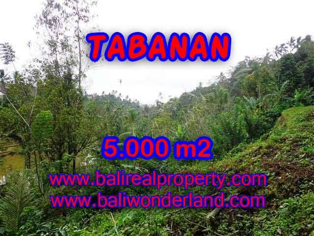 DIJUAL TANAH DI TABANAN BALI TJTB139 - PELUANG INVESTASI PROPERTY DI BALI