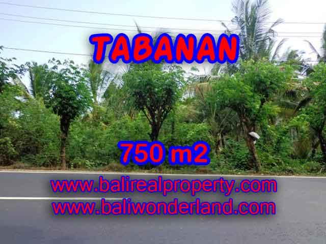 TANAH DI TABANAN BALI DIJUAL TJTB138 - PELUANG INVESTASI PROPERTY DI BALI
