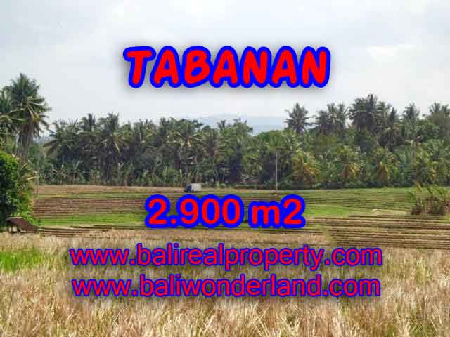 JUAL MURAH TANAH DI TABANAN BALI TJTB136