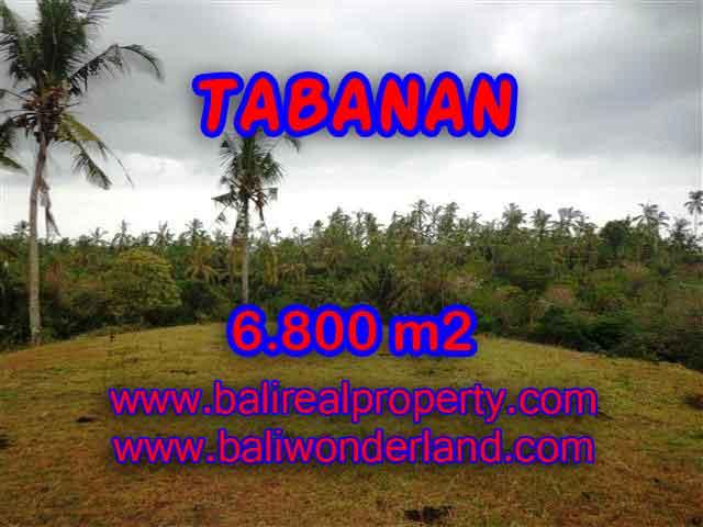 DIJUAL TANAH DI TABANAN RP 320.000 / M2 - TJTB140 - INVESTASI PROPERTY DI BALI