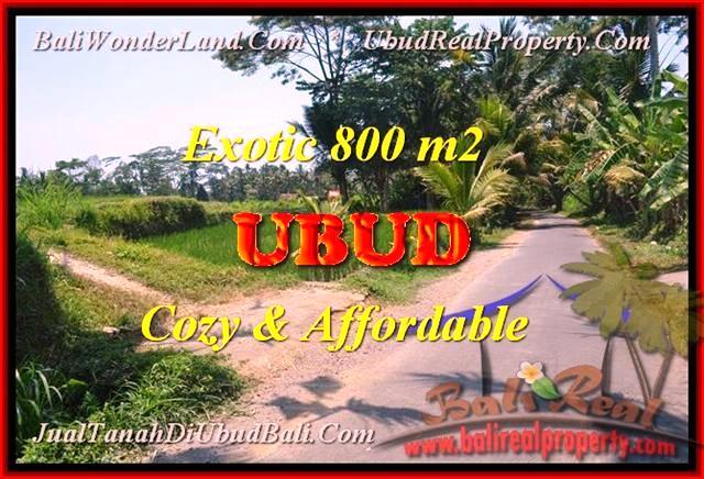 INVESTASI PROPERTY, DIJUAL TANAH MURAH di UBUD TJUB457